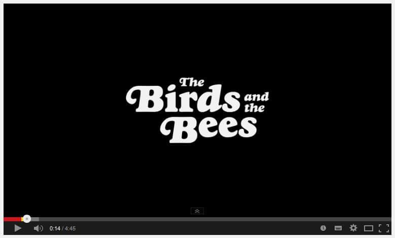 birdsandbees