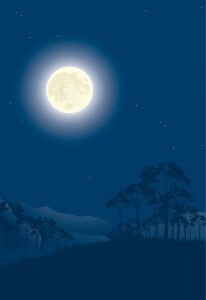 moon-night-vector-illustration_s