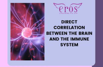 Direct Correlation Between the Brain and the Immune System